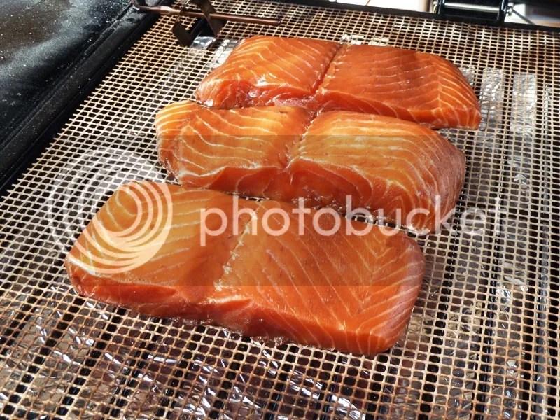 traeger ptg hot smoked salmon smokin 39 pete 39 s bbq