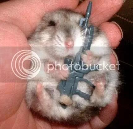 hamster photo: Gun Hamster hamsterguncute.jpg