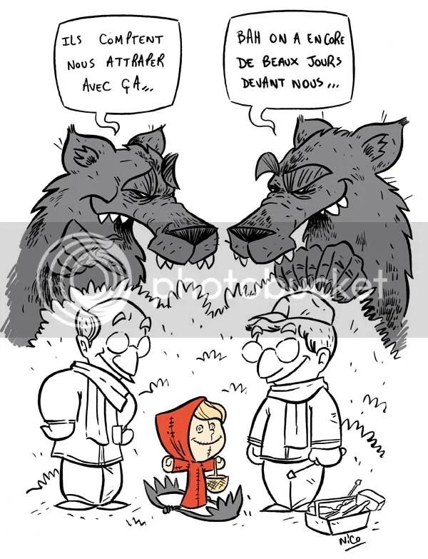 comment-capturer-loup