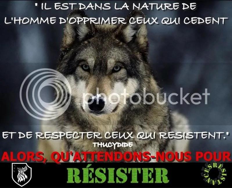 loup_resister