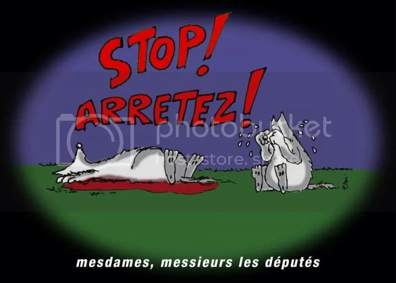 Stop aux tirs de loup photo stopauxtirsdeloup_zps948ba2bd.jpg