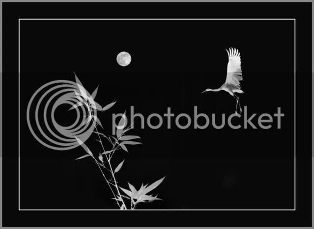 https://i1.wp.com/i86.photobucket.com/albums/k88/suonglam_2006/MotCoiThienNhan/anhthien7.jpg