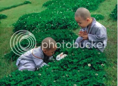 https://i1.wp.com/i86.photobucket.com/albums/k88/suonglam_2006/MotCoiThienNhan/lichdinhhoi-2-1.jpg