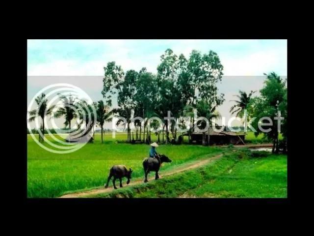 https://i1.wp.com/i86.photobucket.com/albums/k88/suonglam_2006/VietNam/Slide13.jpg