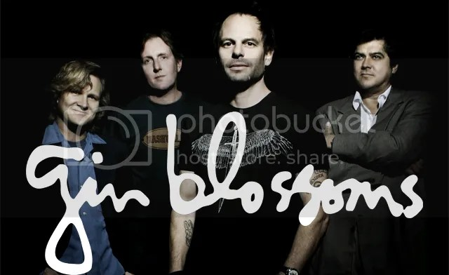 Image result for gin blossoms
