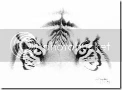 Luar Biasa Melukis Sketsa Dengan Mulut Sungguh Indah Wwwkliktv