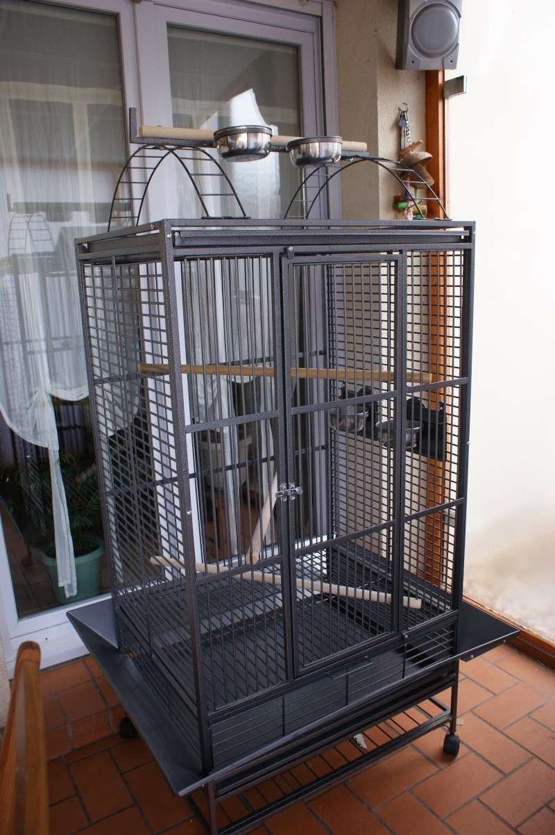 Cage Perroquet Pas Cher
