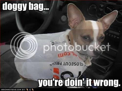 https://i1.wp.com/i874.photobucket.com/albums/ab306/wj_emm/11-14-09/funny-dog-pictures-doggy-bag.jpg