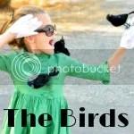 thebirdstitlephoto 1