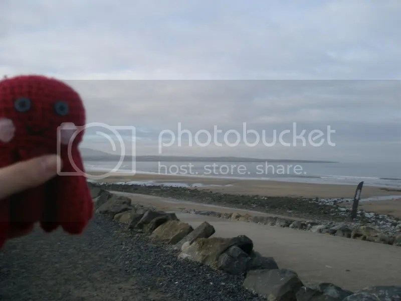 Otto on the beach.