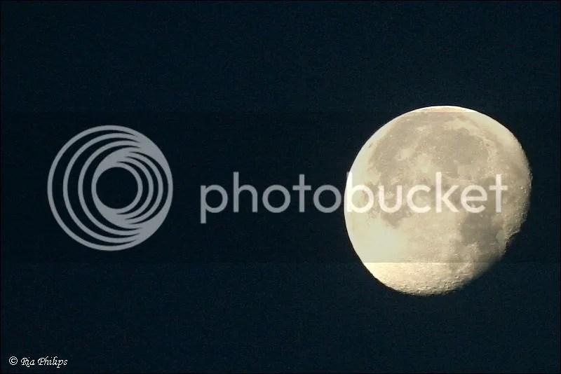 photo IMG_3648.jpg