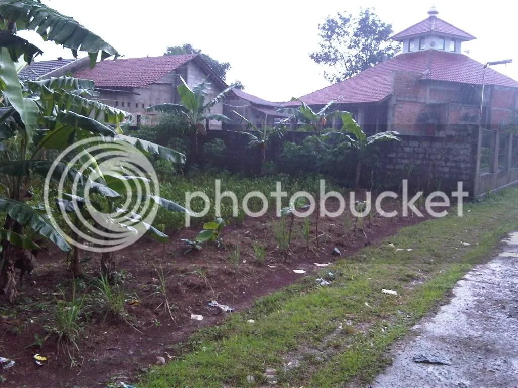 Foto depan, saping rumah warga