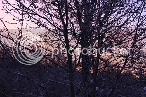Hagley sunrise 1