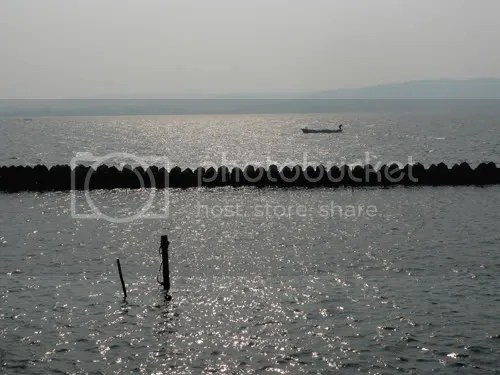 Shijimi Port 2