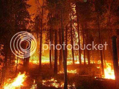 wildfire photo: wildfire wildfire.jpg