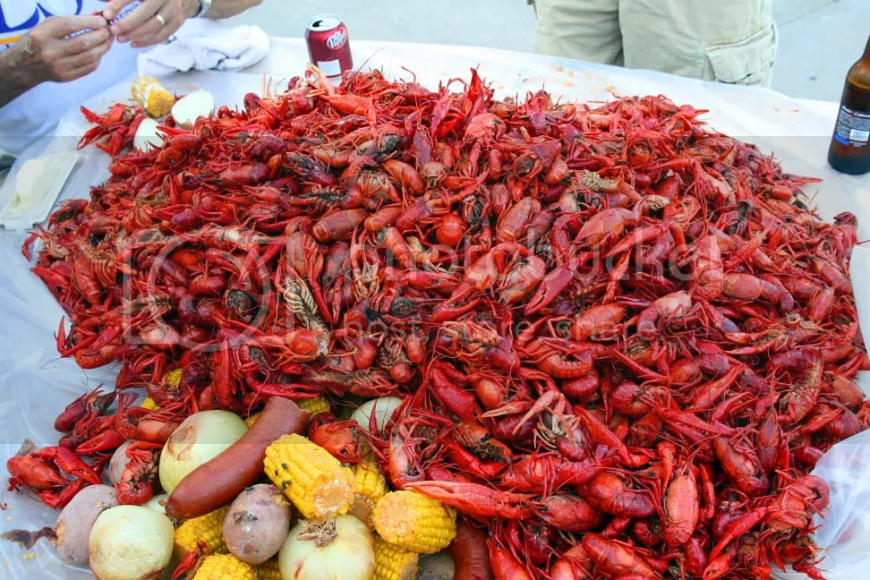 Crawfish Boil Image