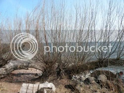 Leif Erickson Park's lakeshore