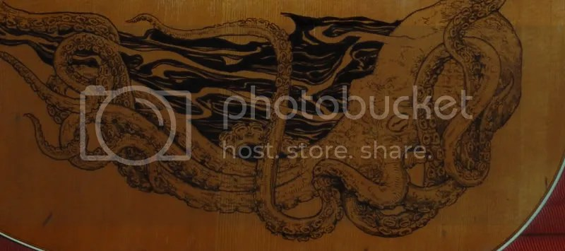 octopus detail