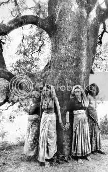 Chipko Movement in India