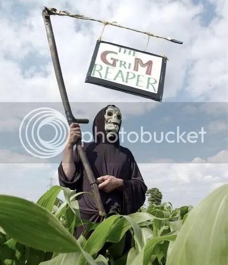 photo GMfoods.jpg