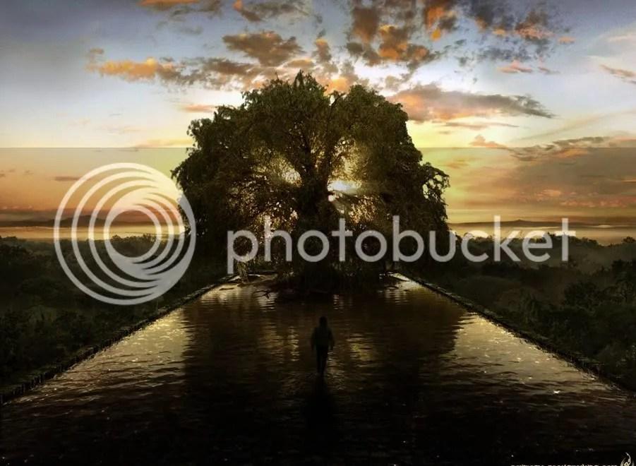 tree of life photo: life tree tree.jpg
