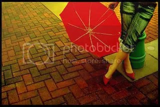 Umbrella Pictures, Images and Photos