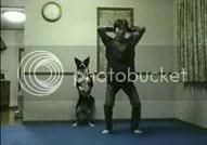 Chó tập thể dục cùng chủ