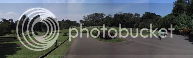 Salah satu sudut Kebun Raya Bogor