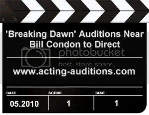 Breaking Dawn Director and Auditions