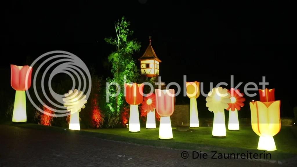 Blumenwiese Kunstnacht Bad Wimpfen