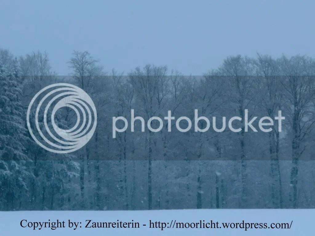 photo Gesammeltebilder568_zpsdea08193.jpg