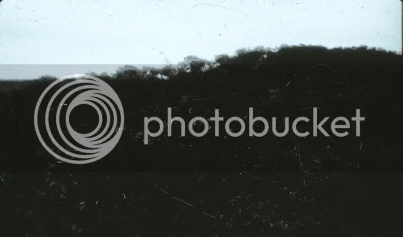 photo IMG_0010-1.jpg