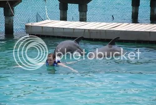 Dolfijnen duwen mij voort