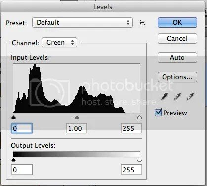 Levels Dialogue Box in Photoshop CS5