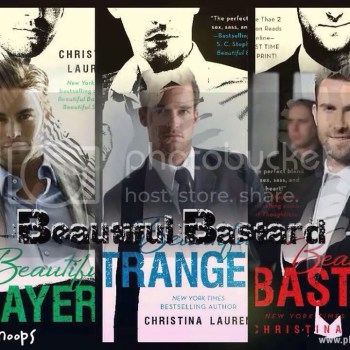 Welcome to the Collector of Book Boyfriends Blog