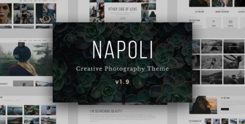 Download Nulled Napoli v1.9.8 - Modern Photography Portfolio Theme