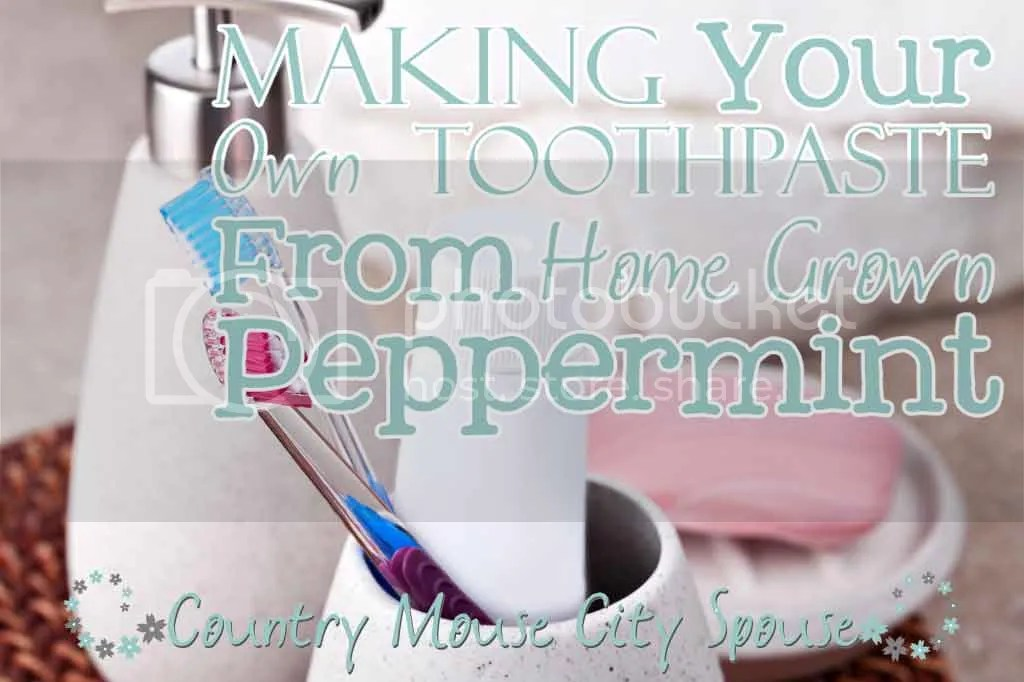 Making Your Own Toothpaste From Home Grown Peppermint- Country Mouse City Spouse