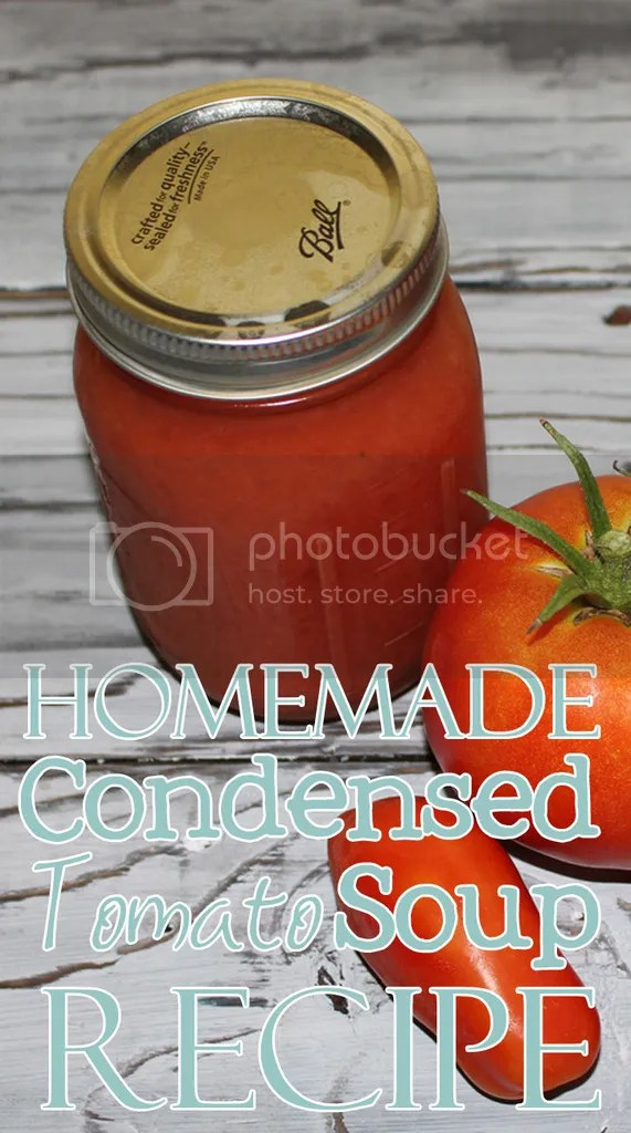 Homemade Condensed Tomato Soup Recipe