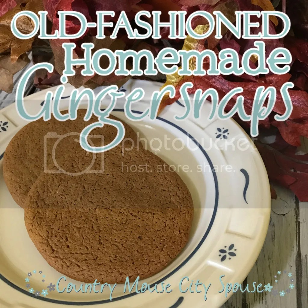 Old Fashioned Ginger Snaps