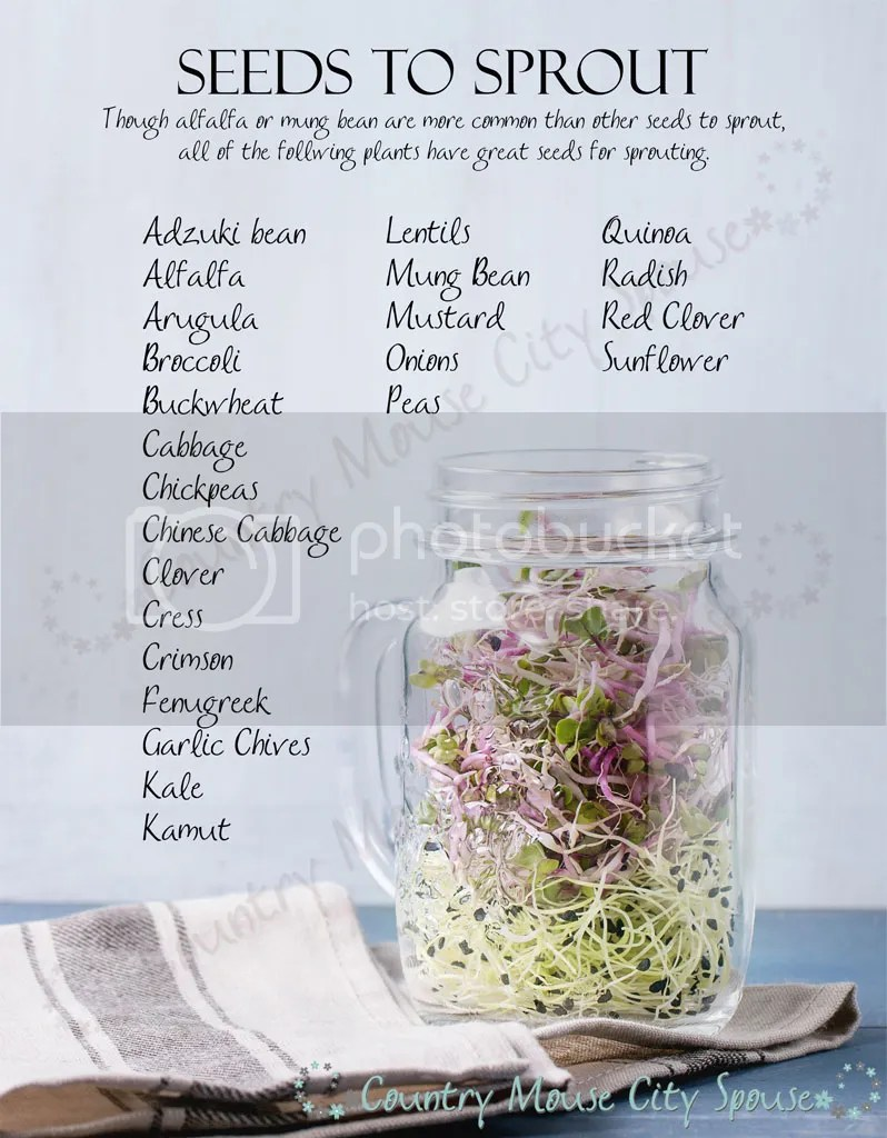 Sprouting a Winter Garden- Country Mouse City Spouse Seed to Sprout List