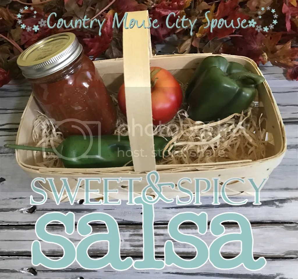 "Sweet & Spicy Salsa- Country Mouse City Spouse I love a good salsa with some chips. Or nachos for dinner (which are way better when you make them at home than when you ""run for the border"") on a lazy weekend."