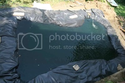 large koi fish pond made with roofing plastic