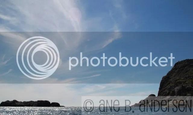 photo IMG_0905.jpg