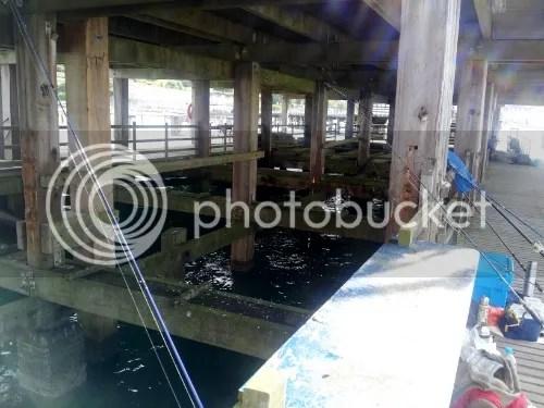 Under the Swanage Pier Main Deck