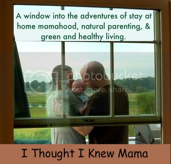 I Thought I Knew Mama: A window into the adventures of stay at home mamahood, natural parenting, & green and healthy living