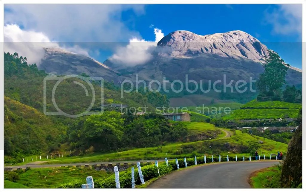 kerala india photo: Munnar, Kerala kerala-tourist-places_zpsb97c91db.jpg