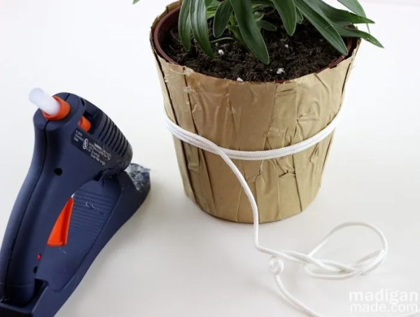 easy lily plant craft