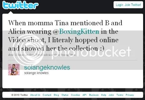 solange boxing kitten