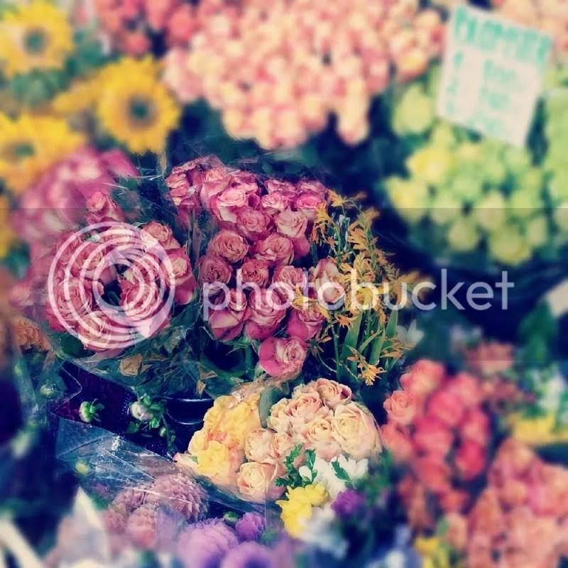 photo blom.jpg