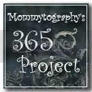 2011 Mommytography 365 Project